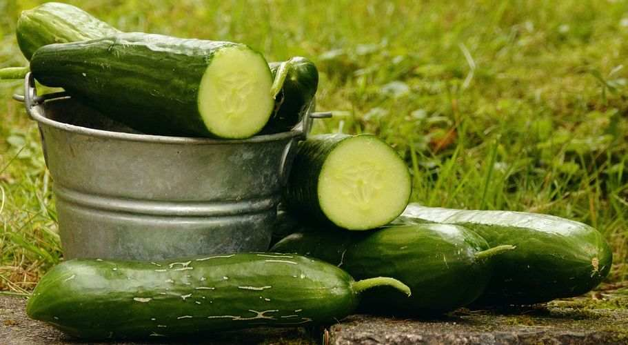Get rid of strawberry legs with cucumbers